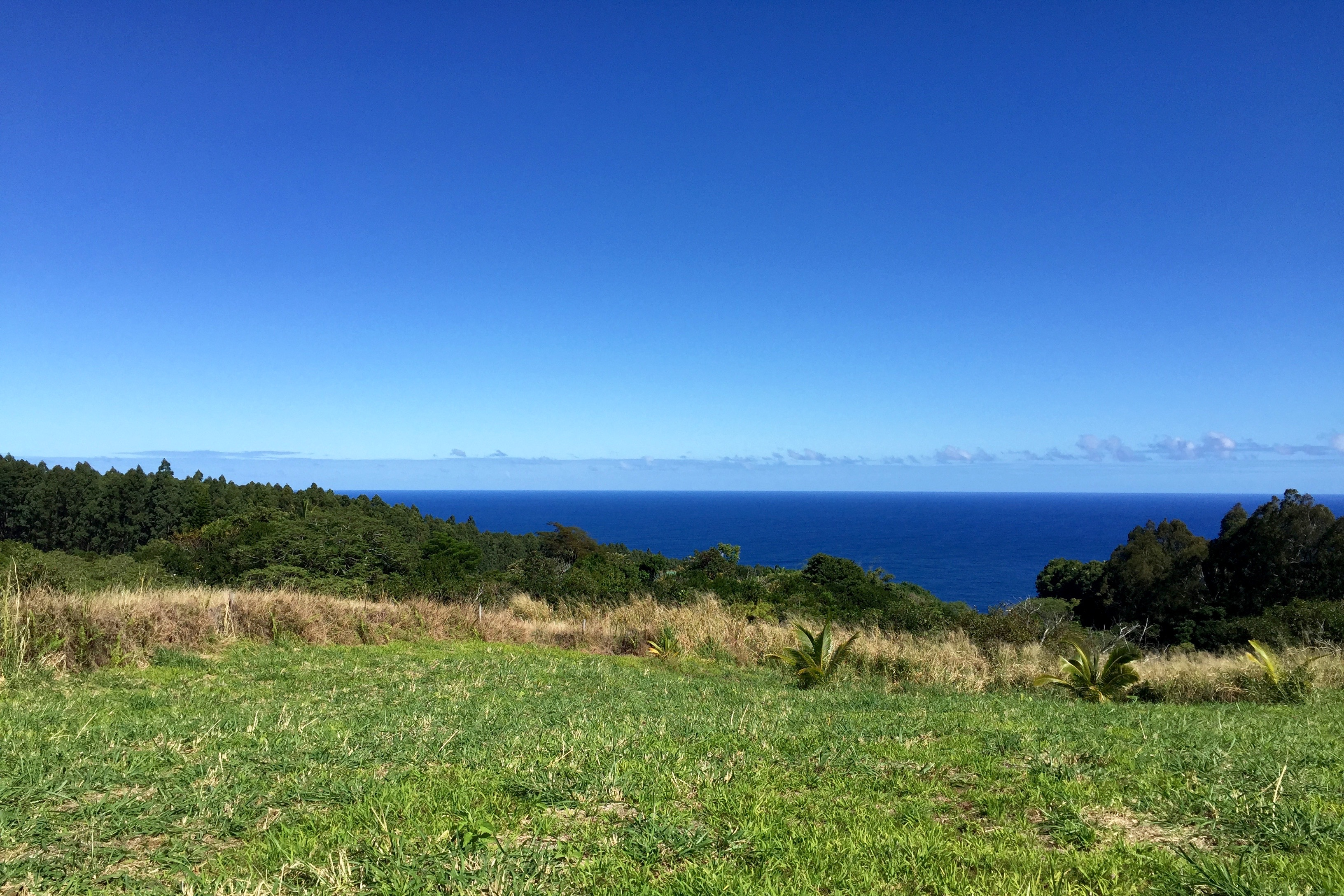 Waipio Valley Property For Sale
