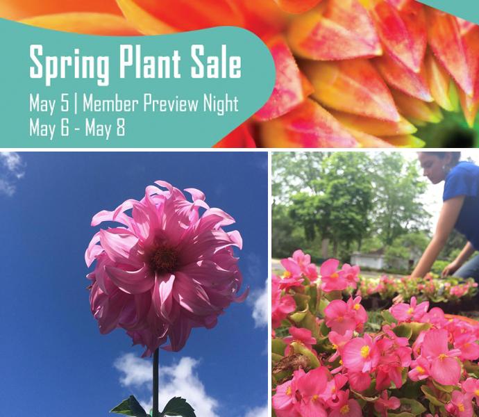 Toledo Botanical Gardens Spring Plant Sale