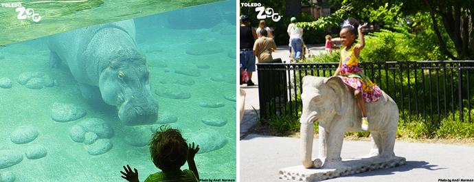 Toledo Zoo Mother's Day
