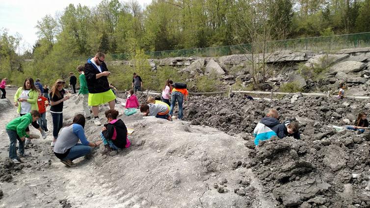 Fossil Park Toledo