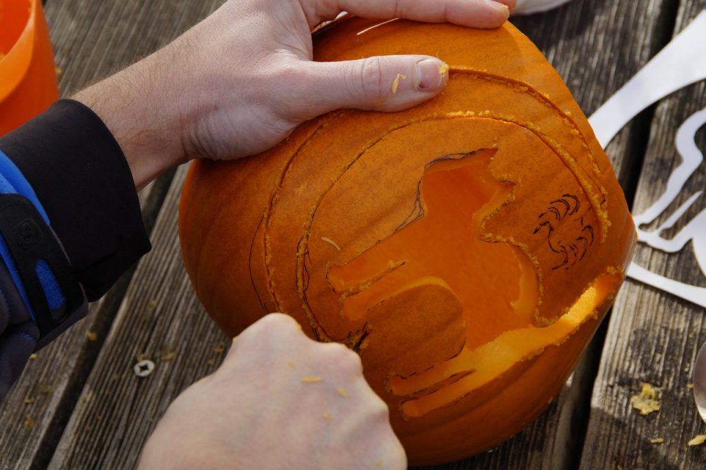 pumpkin-1004990_1280
