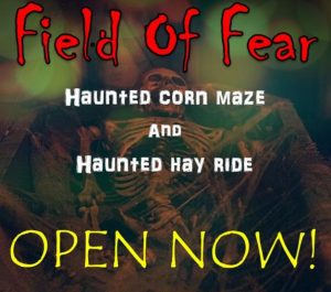 field-of-fear-3