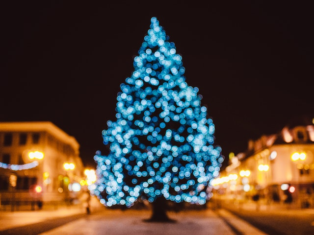 city-tree-bokeh-christmas-21430