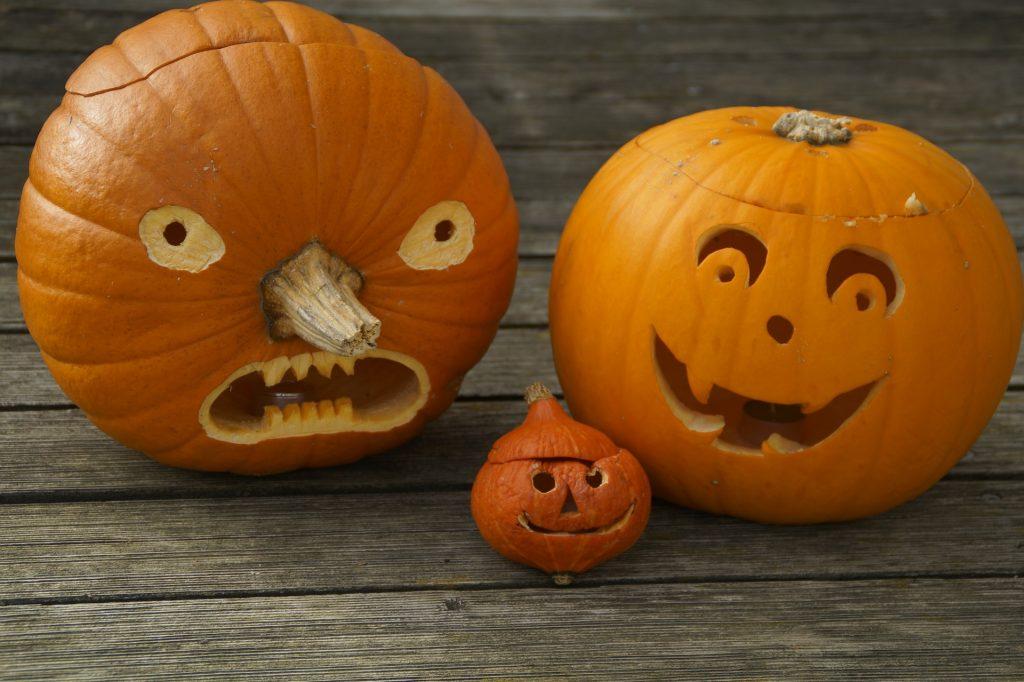 pumpkins-512113_1920