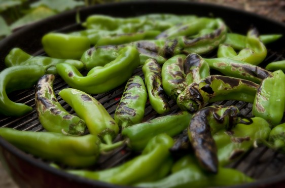 """""""Once a year, the supermarkets are flooded with Hatch Chile Peppers. Once roasted this spicy vegetable makes beautiful soups and stews."""""""