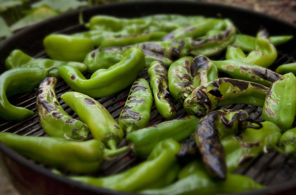 """Once a year, the supermarkets are flooded with Hatch Chile Peppers. Once roasted this spicy vegetable makes beautiful soups and stews."""