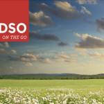 DSO on the GO Coming to Southlake