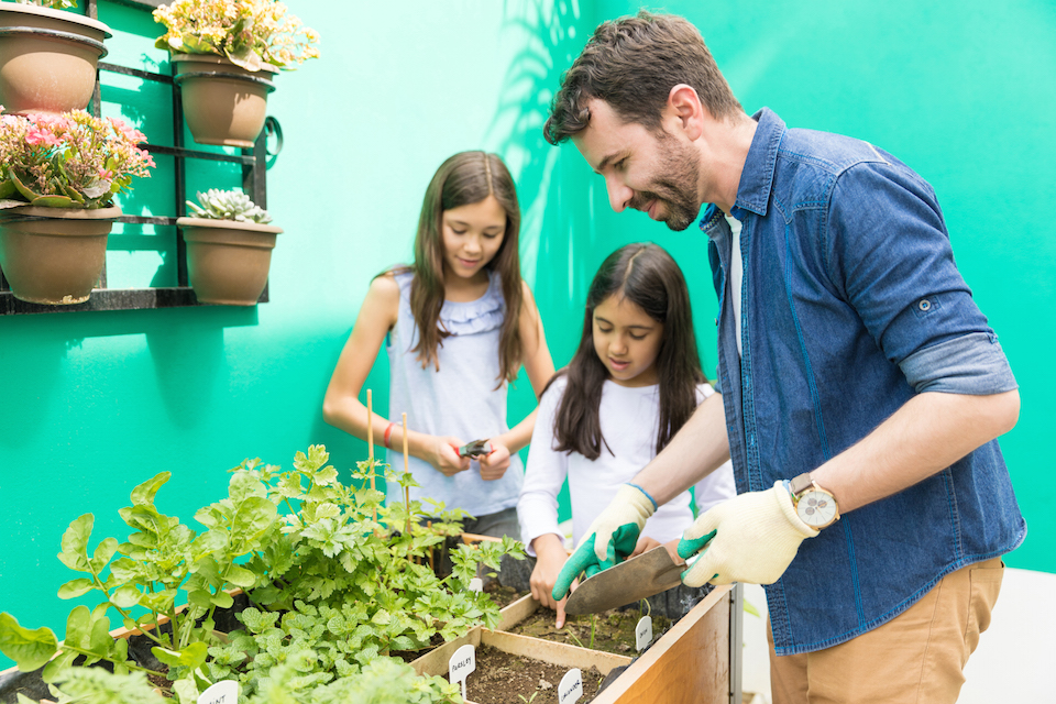 Involving Daughters In A Healthy Hobby