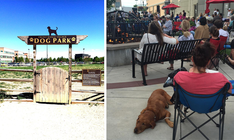 Front Range Village Fort Collins Dog-Friendly