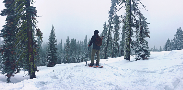Best Snowshoeing in Fort Collins, Loveland, Estes Park, Rocky Mountain National Park