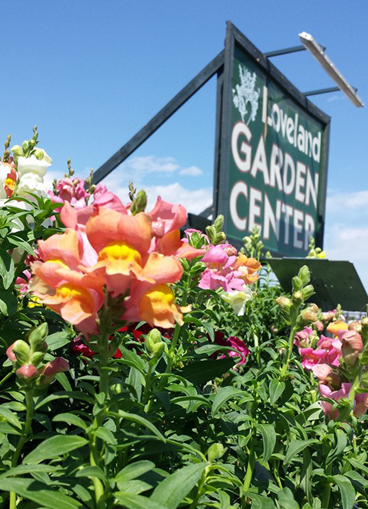 Loveland Garden Center