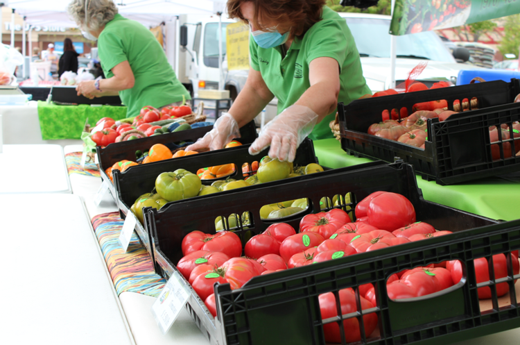 Farmers' Markets in Fort Collins, CO