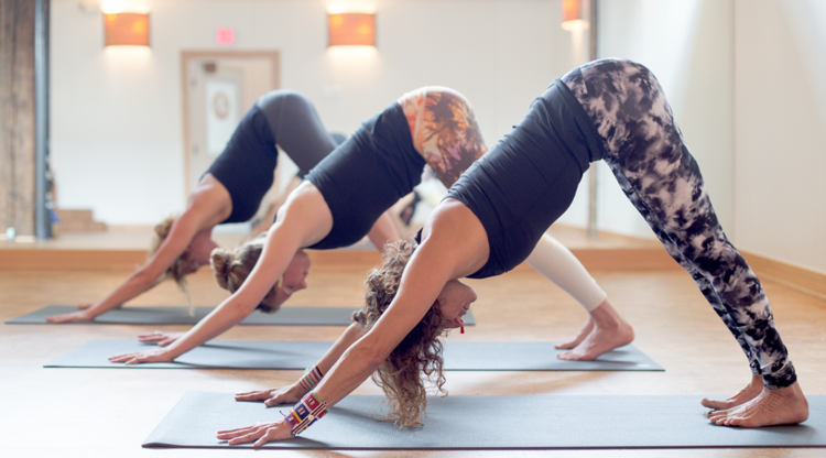 Modo Yoga | Portland, OR