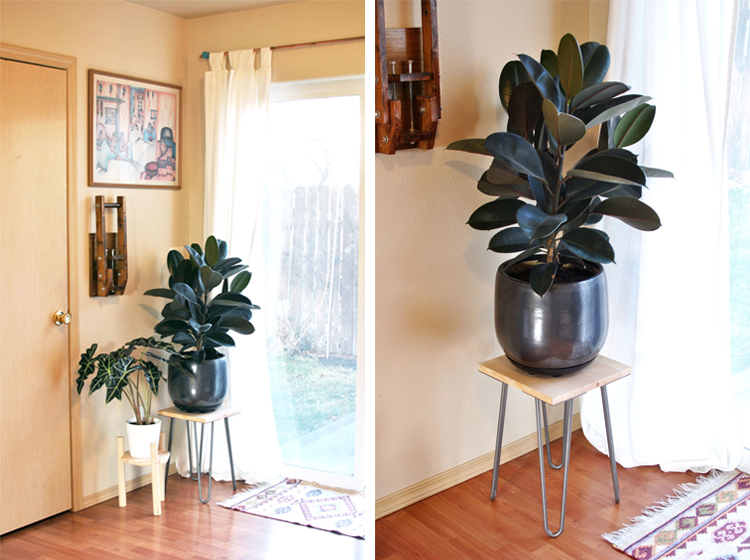 Homey, Homey Blog Hairpin Leg Plant Stand DIY