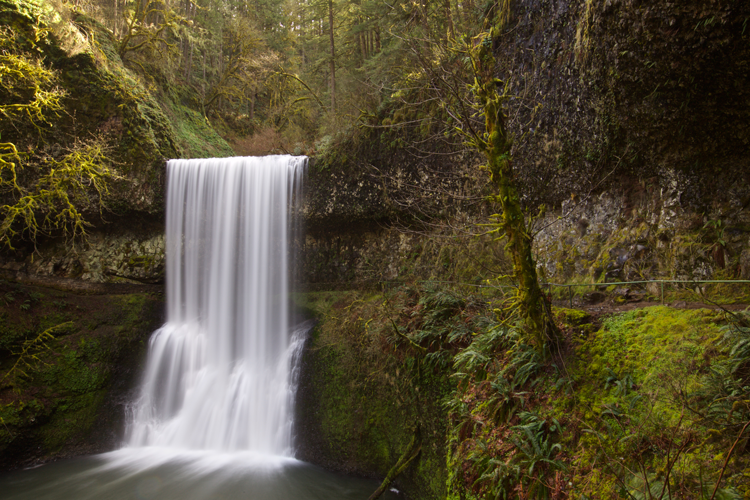 Silver Falls State Park Trail of 10 Falls