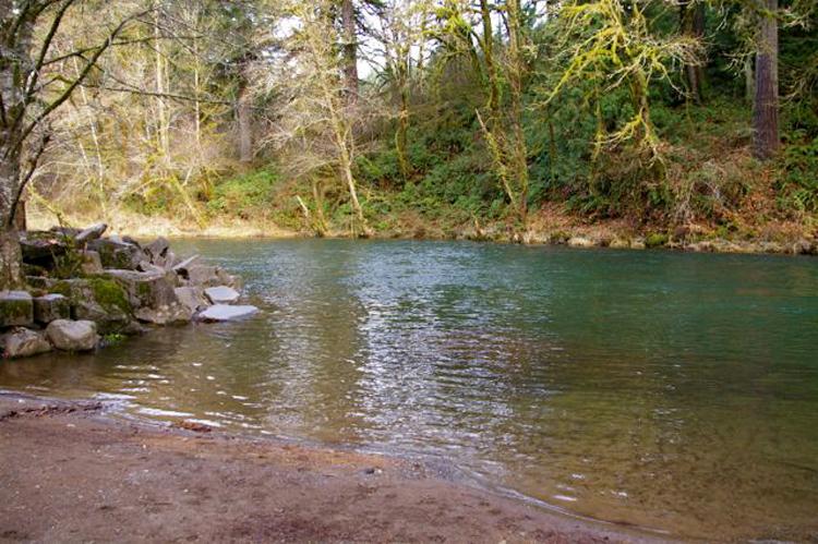 Lewisville Regional Park | Battle Ground, Washington