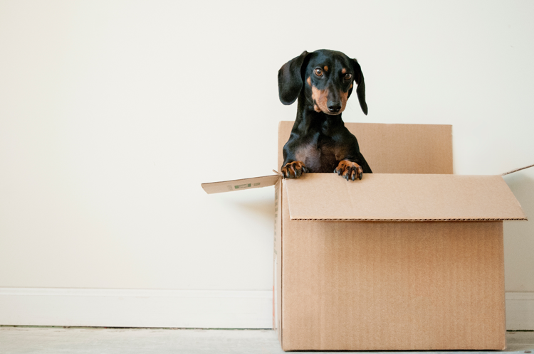 Moving to Portland, OR | The Ultimate Moving Checklist