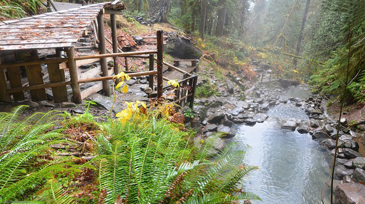 Cougar Hot Springs Oregon