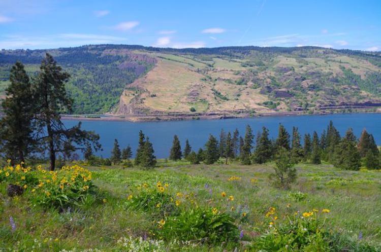 Mosier Plateau Trail | Mosier, Oregon
