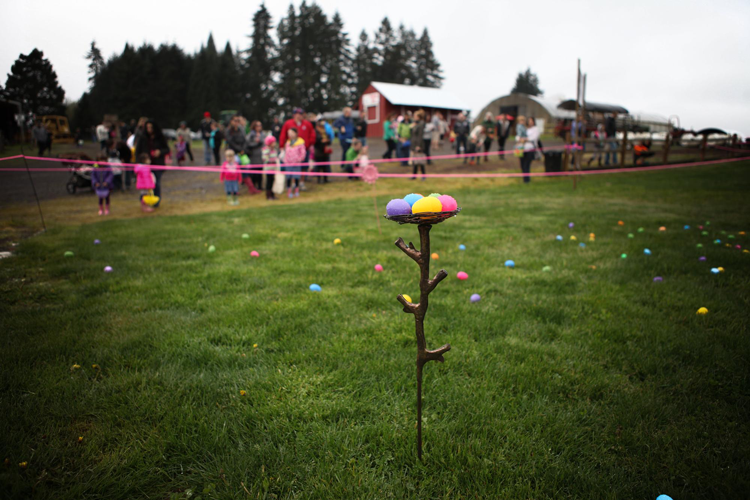 Annual Easter Egg Hunt at Lee Farms