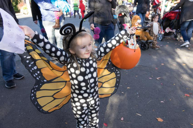 Howloween at the Zoo | Oregon Zoo