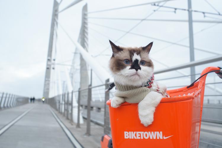 Biketown Portland, OR