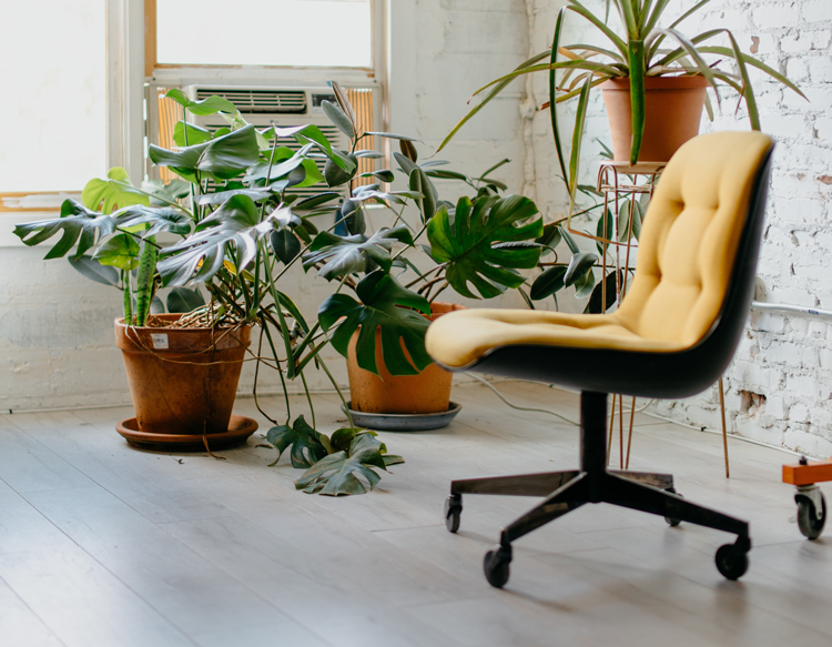 Affordable Ways to Update Your Home Office | Upgrade Your Office Chair