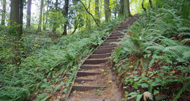 The 9 Best Hikes in the Portland Area