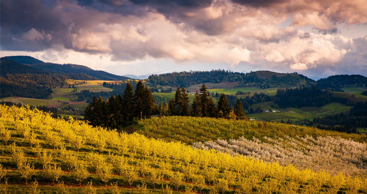 12 Reasons to Move to Hood River, Oregon