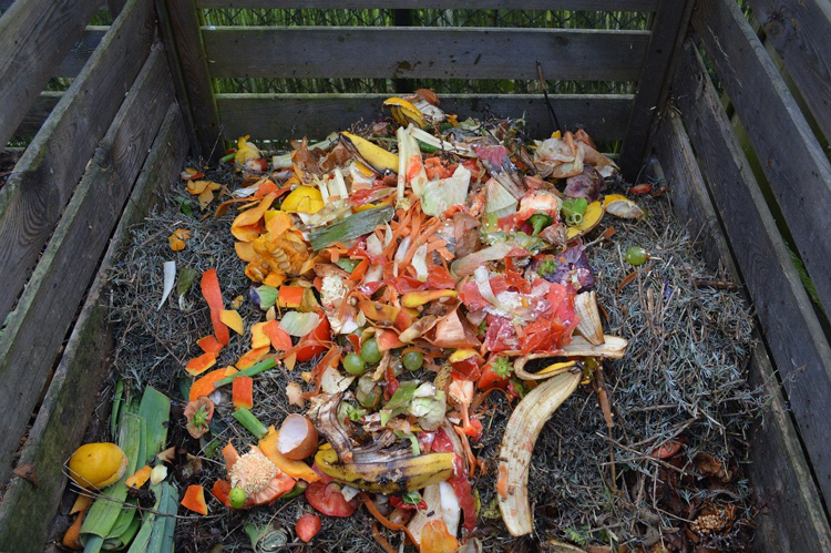 Guide to Composting in Portland, OR