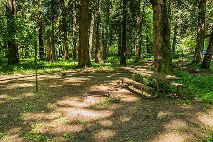 Paradise Point State Park Campground| Ridgefield, Washington