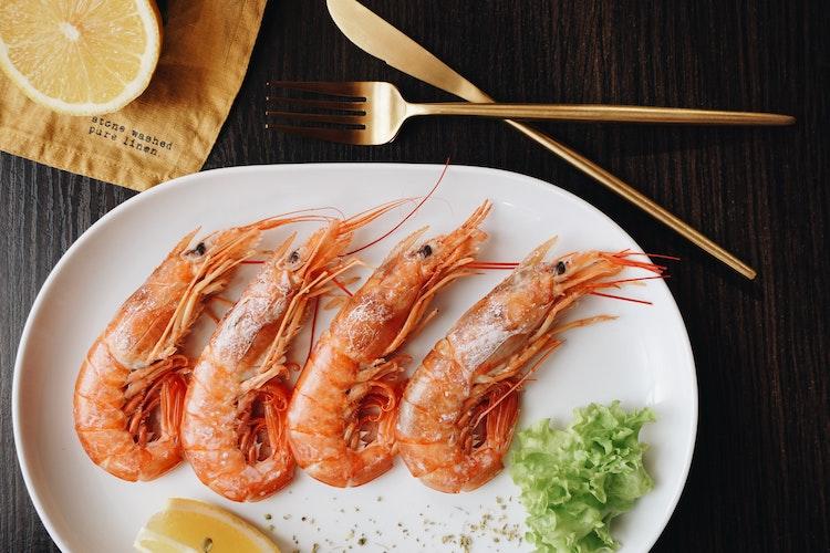 Oregon Coast Seafood