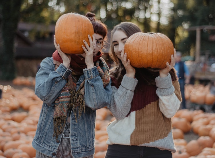 Pumpkin Patches in the Portland Area