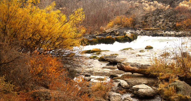 The 11 Best Fall Hikes Around Central Oregon