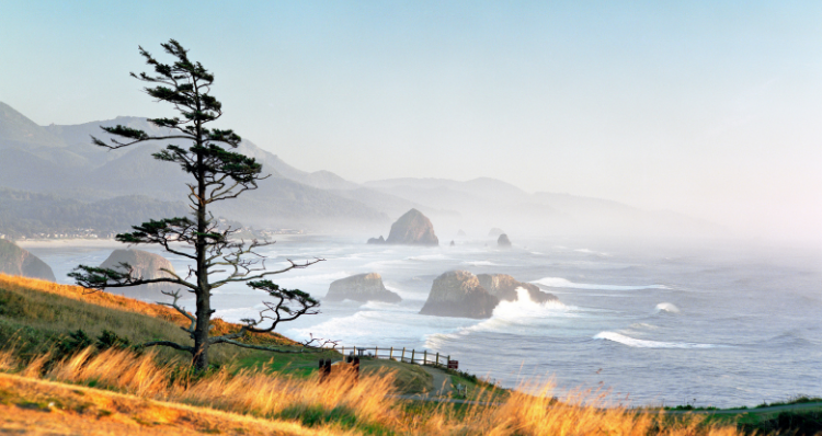 13 Things You Should Do This Fall in Cannon Beach