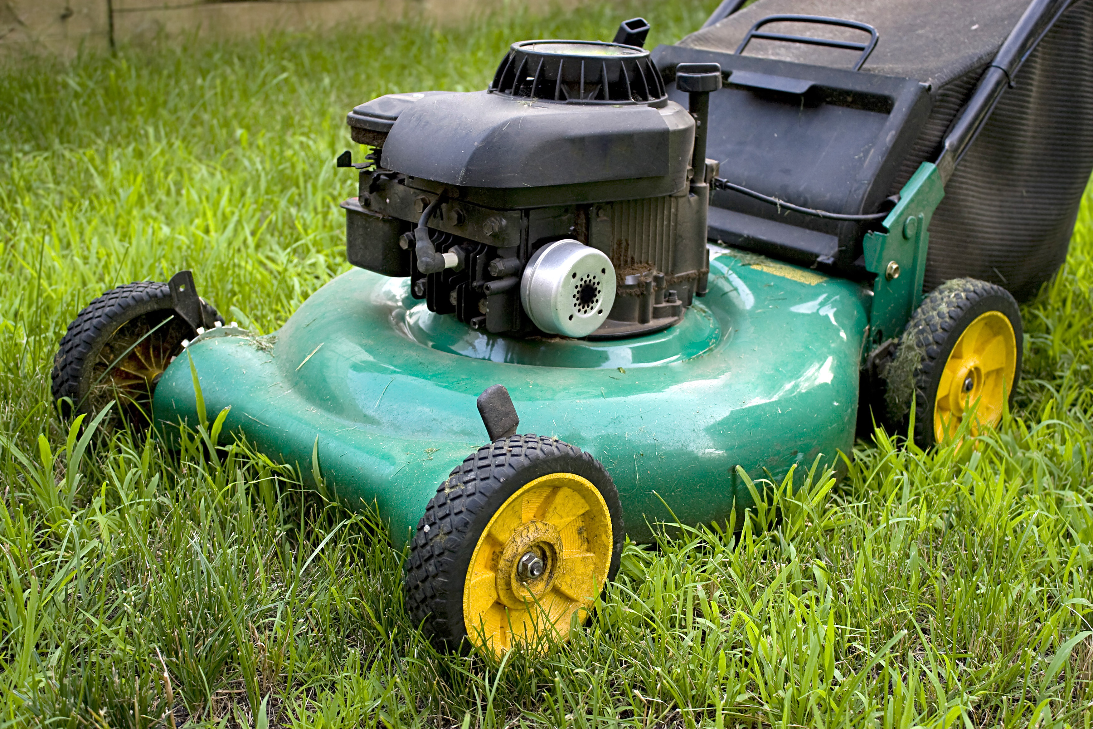 Tips on how to get your lawn spring ready for Lawn mower cutting grass
