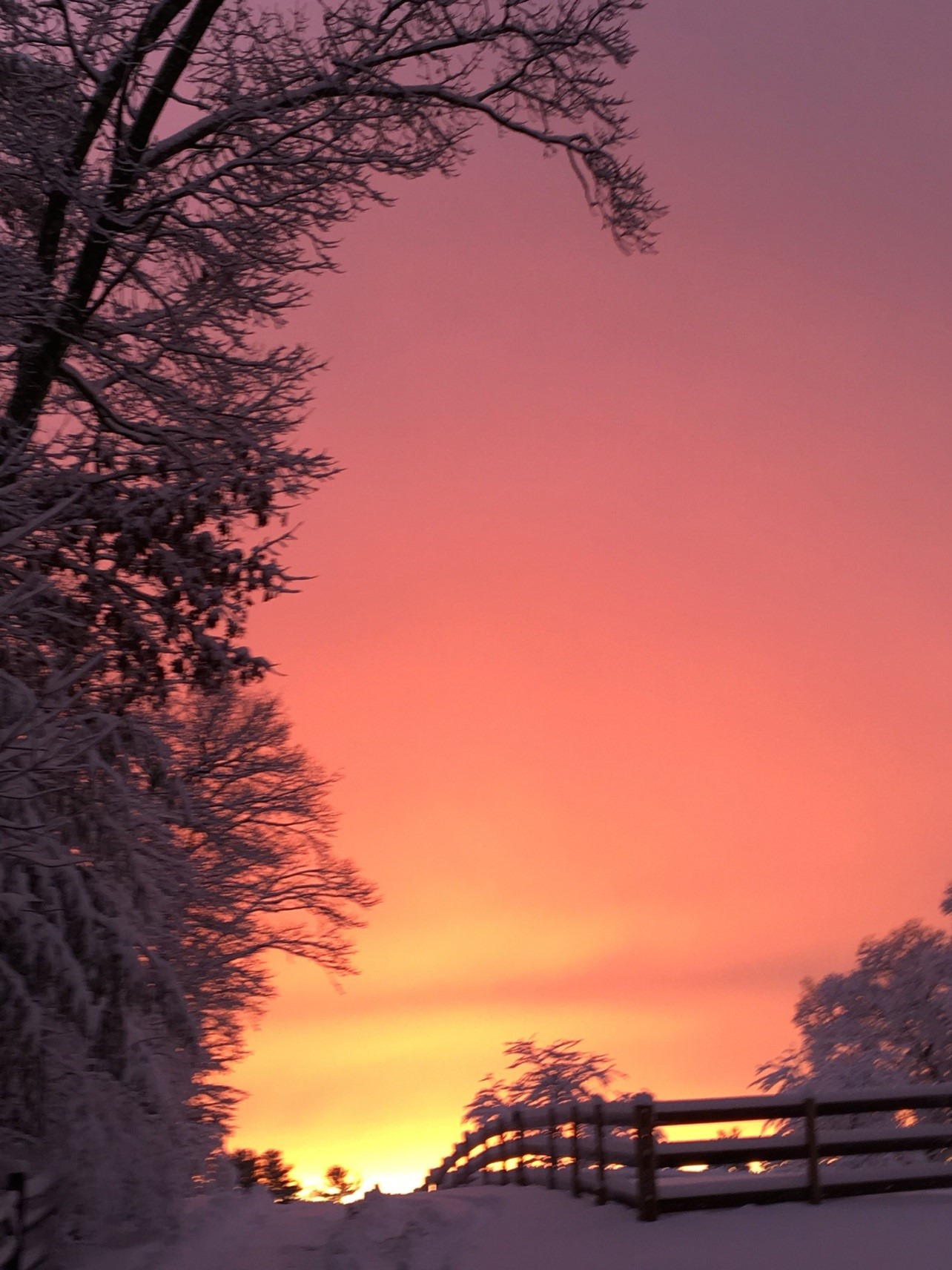 Winter sunsets, the very best kind!