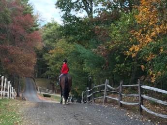 A fall ride