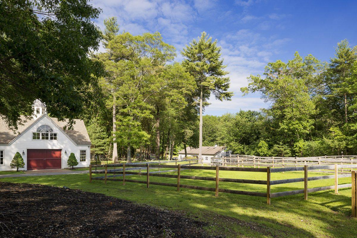 Horse Country - TopLine Farm, Boxford, MA