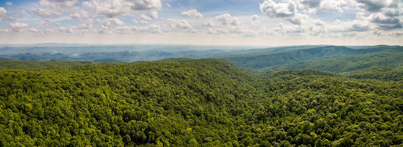 Conservation: Straight Fork, Scott Co VA - Aerial
