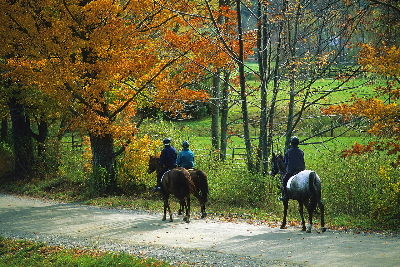 Fall people horseback riding in Ascutney, Vermont.