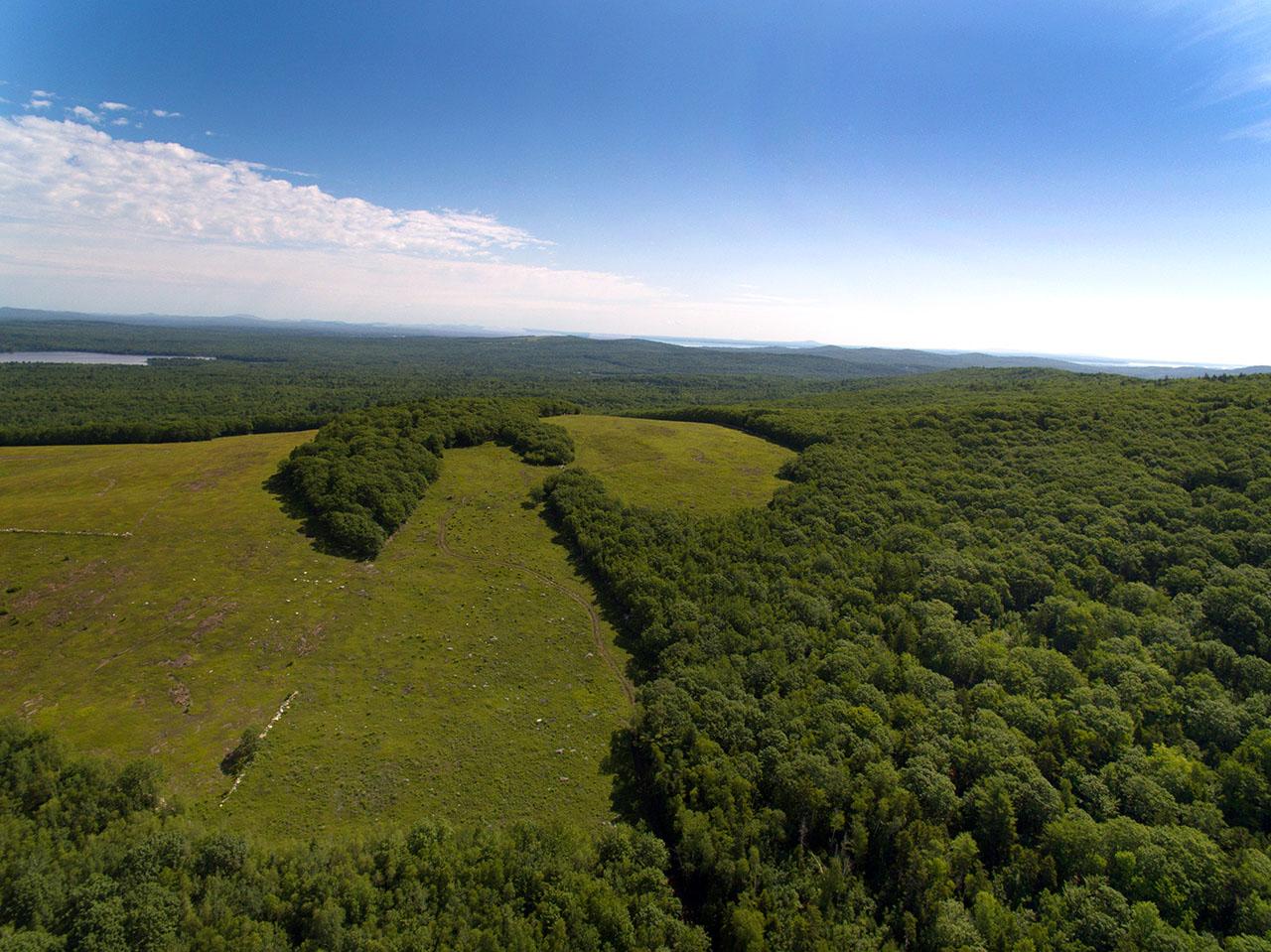 land offerings: Levenseller MT. ME1391_22_CC