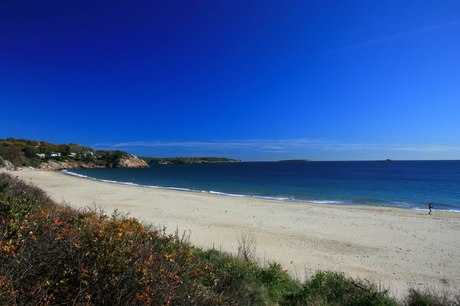 singing beach 3