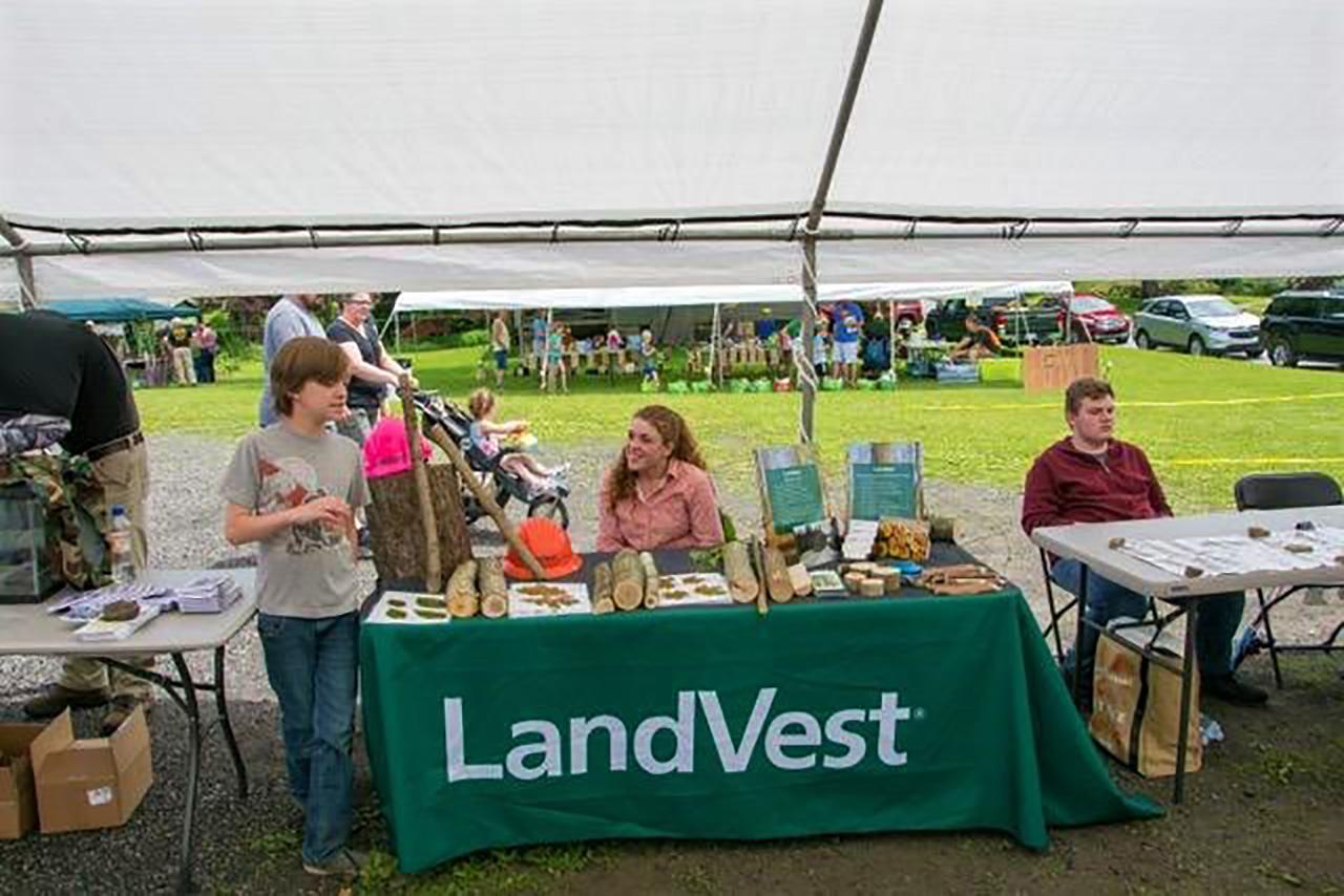 Forestry - LandVest Ridgway