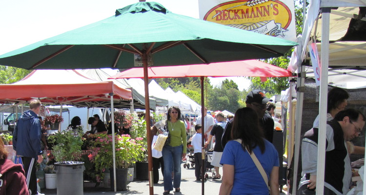 San Francisco Farmers' Markets | LOS GATOS FARMERS' MARKET