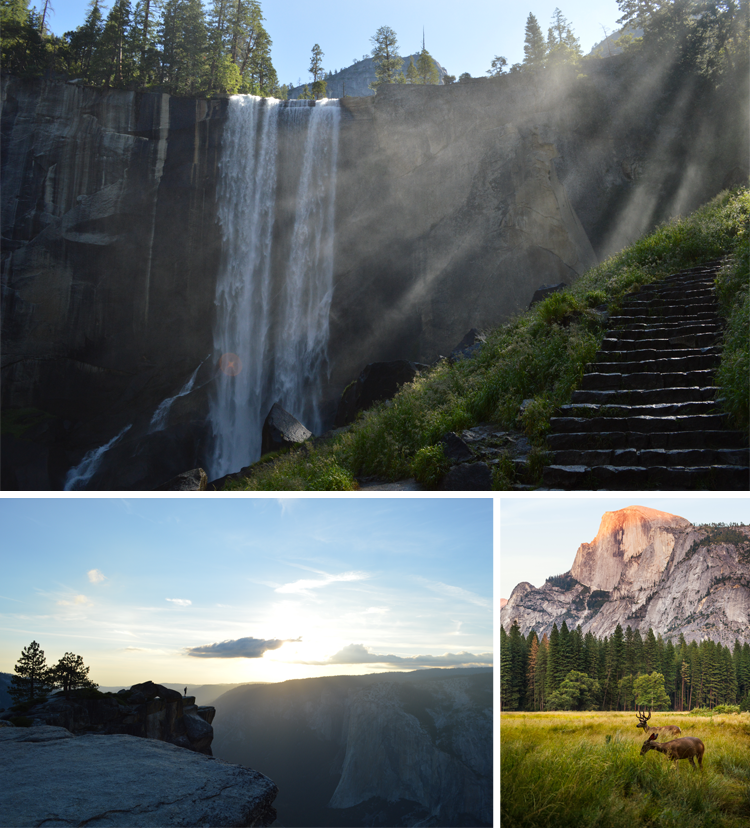 Yosemite National Park Road Trip