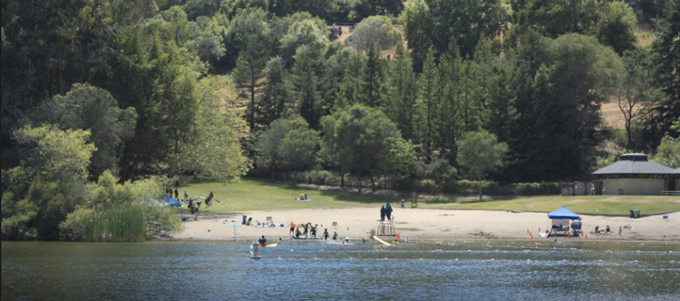 Lake Anza Oakland Swimming