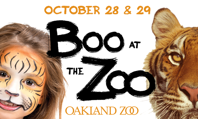 Oakland Zoo Boo at the Zoo Halloween Events Bay Area