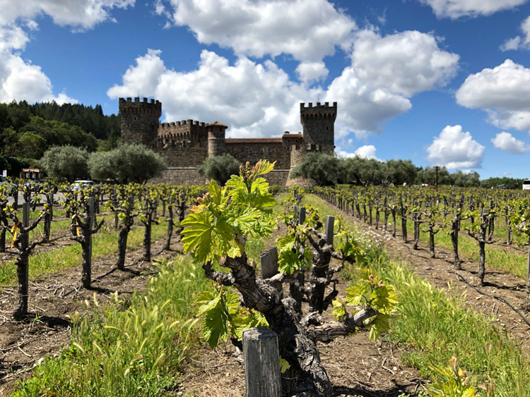 Castello di Amorosa in Calistoga California day trip