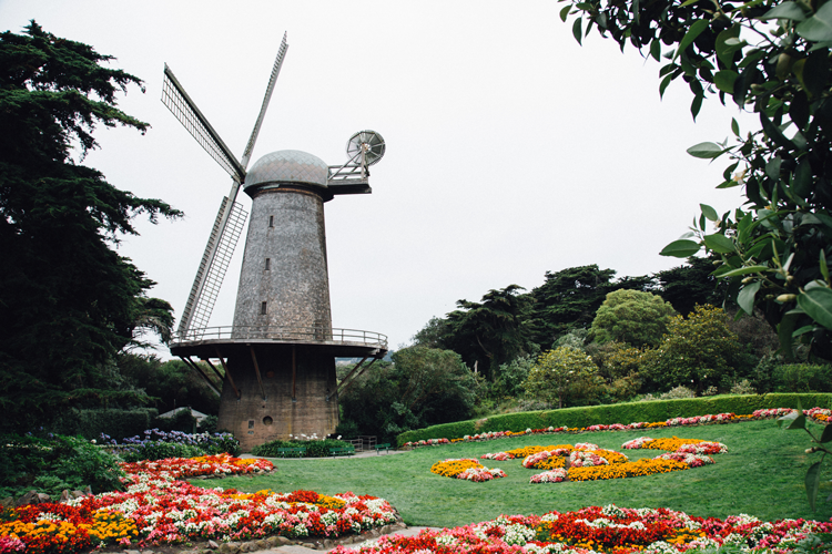 things to do in Golden Gate Park San Francisco